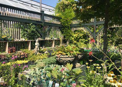 Kertészet Budapesten