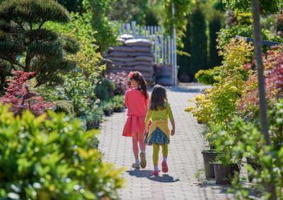 Budai Kertcentrum: séta a kertészetben