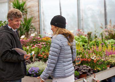 Budai Kertcentrum kerttervezési tanácsadás