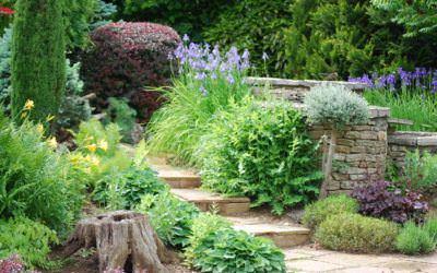 Szakcikk 6.: Lépcsők a kertben