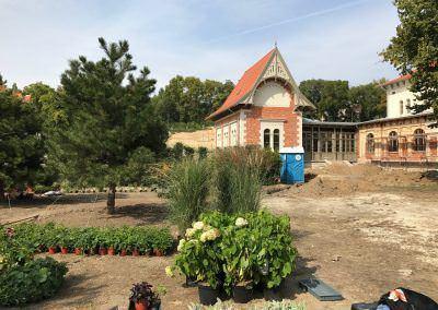 Nagy kert építési munka Budai Kertcentrum 2