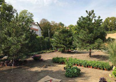Kertépítés Budai Kertcentrum