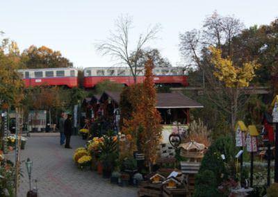 Budai kertcentrum kertészet