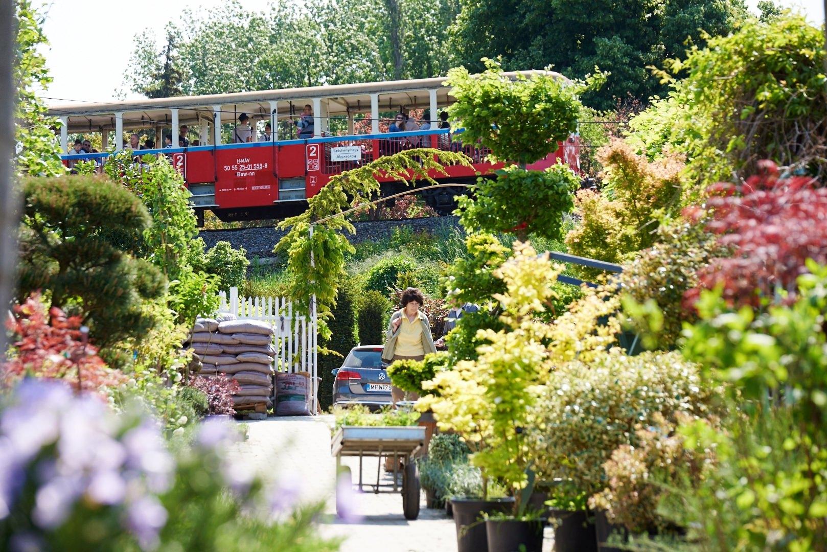 Kertészet Budapest - Budai Kertcentrum Kft