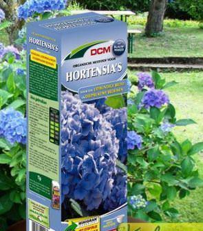 Hortenziamánia - kéktápanyag