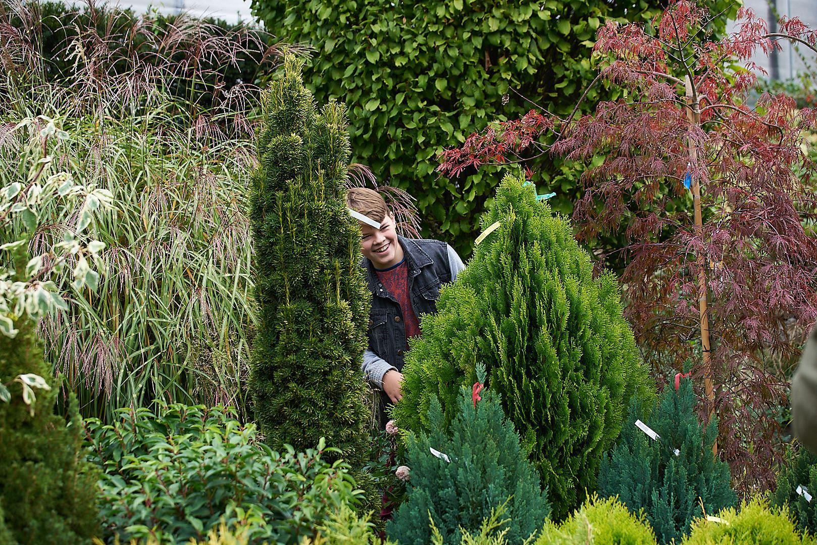 Családi kertészet blog